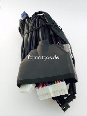 Landirenzo Kabelstrang LC01 6 Zyl. mit Bosch Stecker